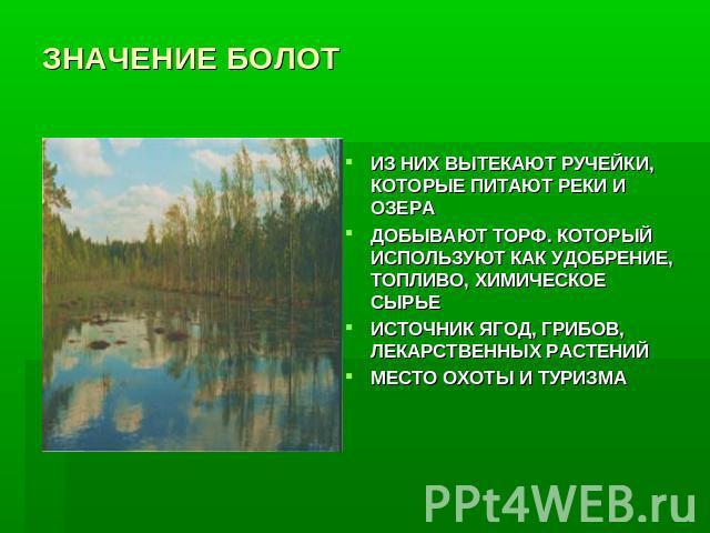 Почему на территории ленинградской области много болот и заболоченных