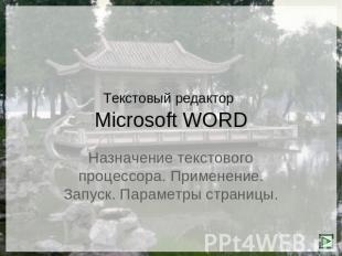 Скачать презентацию по теме майкрософт ворд