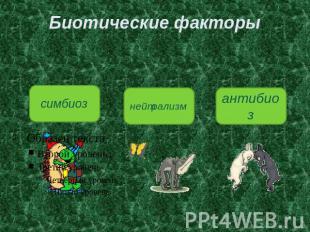 Симбиоз Презентация По Биологии