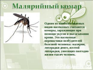 Презентацию на тему комар