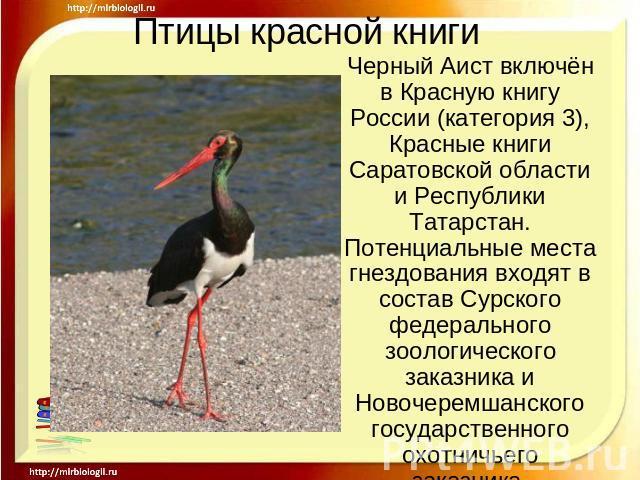 Скачать видео красная книга казахстана