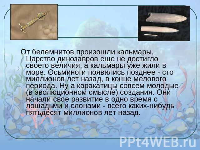 русский язык 8 класс разумовская гдз решебник
