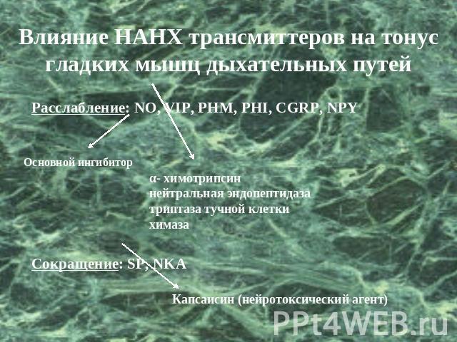 Эндопептидаза фото