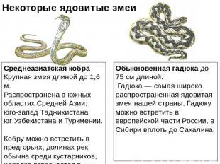 Первая помощь при укусах змей и