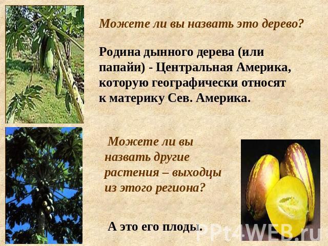 америка знакомство по русский