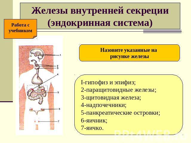 презентацию на тему железа