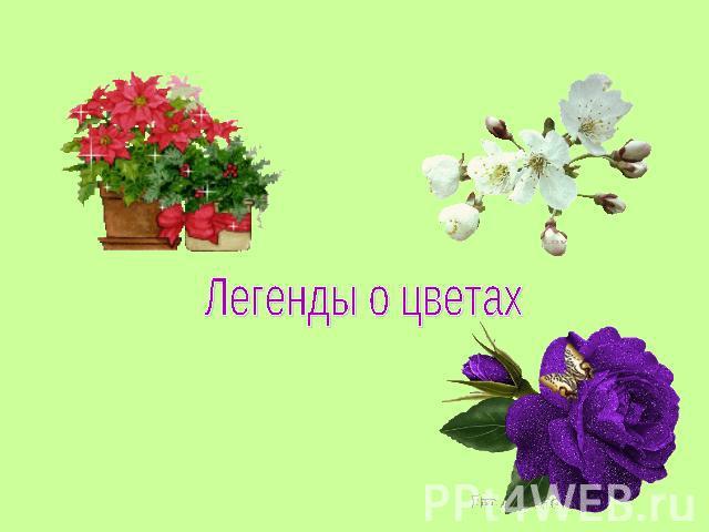 Презентацию на тему цветов
