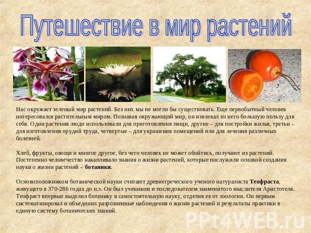 Презентацию на тему удивительный растение мира