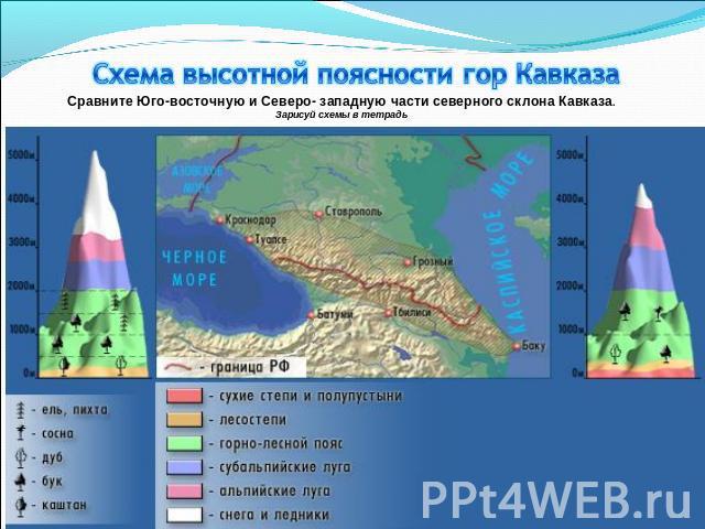 Схема высотной поясности гор