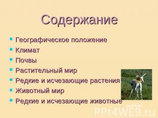 На тему природные зоны россии