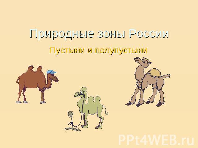 Природные зоны России. Пустыни