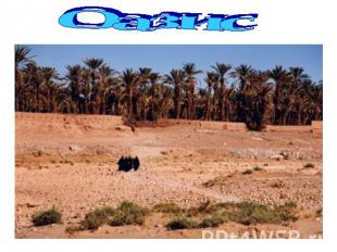Презентацию на тему тропические пустыни влияние человека на природу