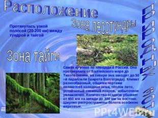 Расположение природных зонПротянулась узкой полосой (20-200 км) посреди тундрой и