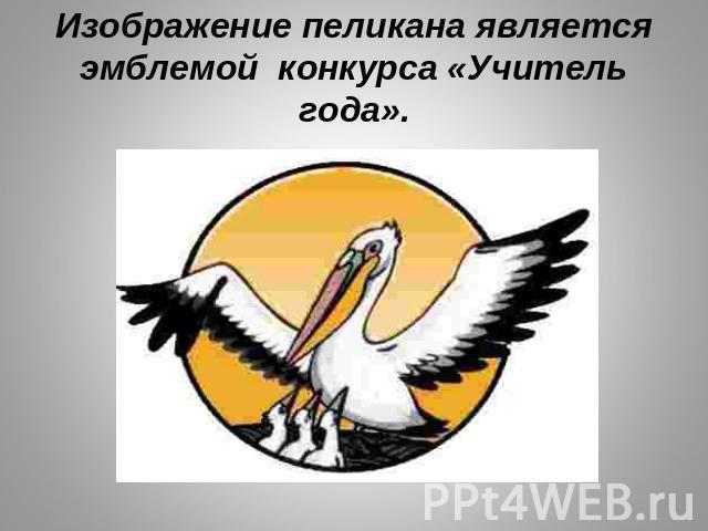 Символ учителя года пеликан почему
