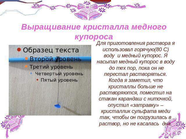 инструкция по выращиванию комнатных растений