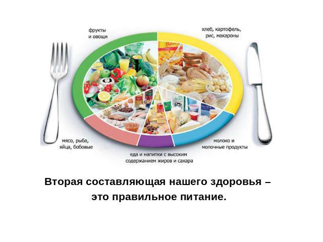 основы составляющие здорового образа жизни