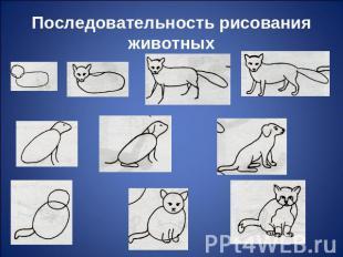 Последовательность рисования животных.