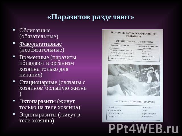 какие паразиты находятся в организме человека