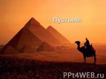 Презентация На Тему Жаркие Пустыни