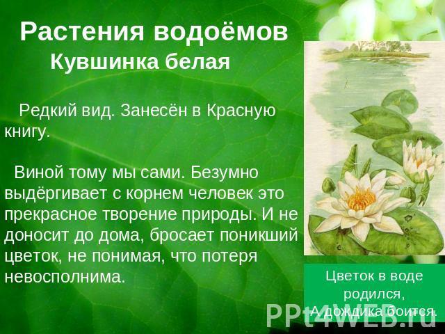 И редкие растения даниловского края
