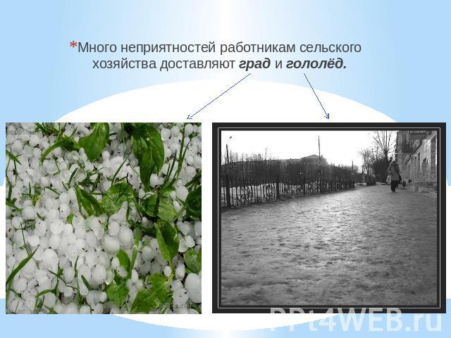 Погода шахты ростовская область на 10 дней