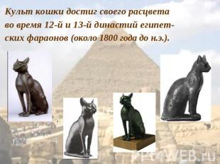 http://ppt4web.ru/images/1402/41615/310/img5.jpg
