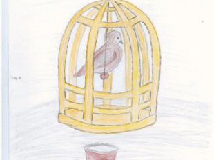 Рисунки к сказке соловей андерсен