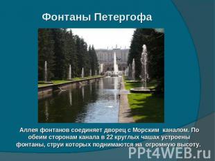 Фонтаны Петергофа Аллея фонтанов соединяет дворец с Морским каналом. По обеим ст