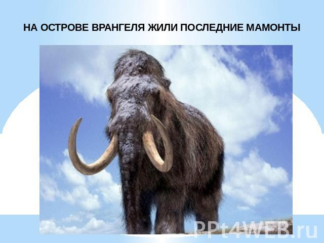 Михаил Ремизов. Бомбардировка вместо взлома. 26.4.2010.