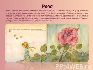 РозаРоза - сие кредо любви, красоты, женского начала. Маленький принц безвыгодный сразу