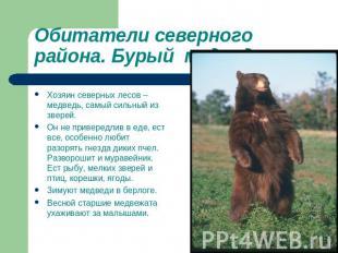 Презентация на тему животные зоны лесов
