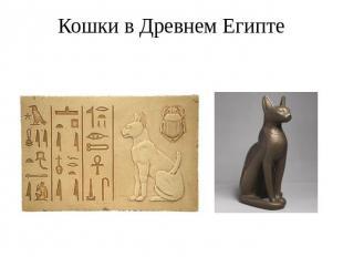 http://ppt4web.ru/images/1487/44150/310/img2.jpg