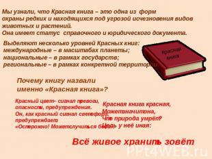 Мы узнали, что Красная книга - это одна из форм охраны редких и