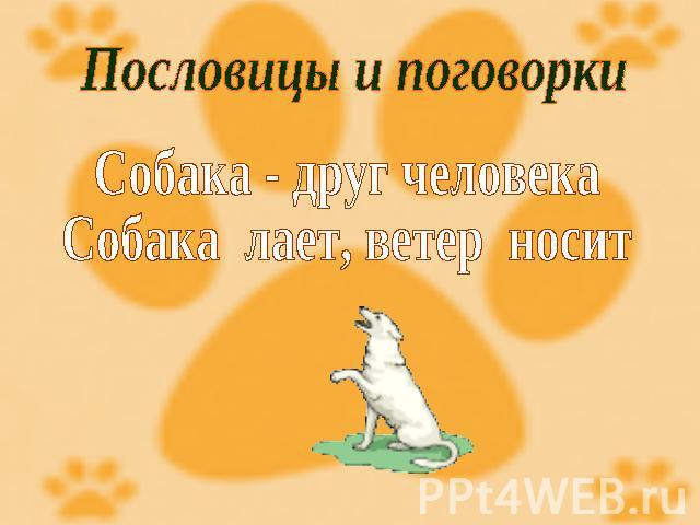 Пословицы о собаке друге человека