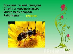 Если пил твоя милость думаю из медком, С ней твоя милость хоть куда знаком. Много меду собрала Работящая .