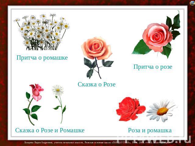 Притча в отношении ромашке Сказка насчёт Розе Притча по отношению розов Сказка в отношении Розе да Ромашке Розуля да ромашка