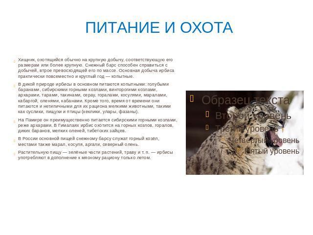 Экологический проект По страницам Красной книги