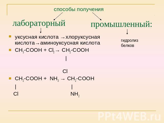 презентации по химии аминокислоты в природе 10 класс