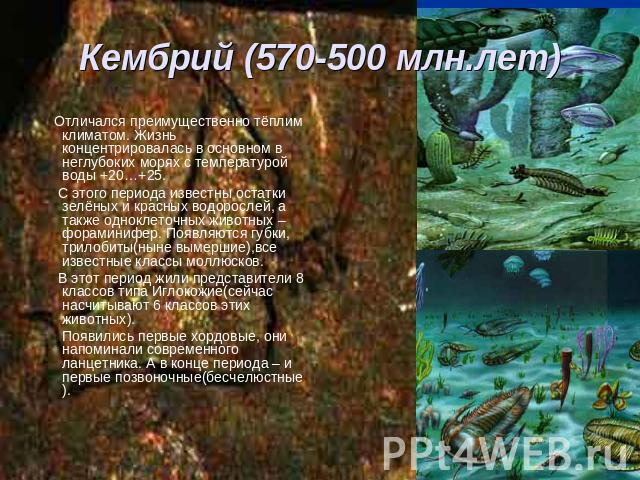Свойства аммиака - kakzdravie.com