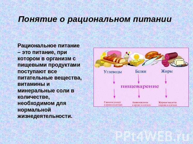рациональное питание при похудении