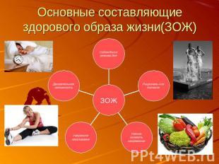 основные составляющие здоровья и здорового образа жизни