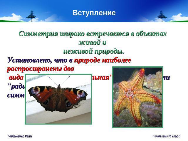 Красота живой природы презентация