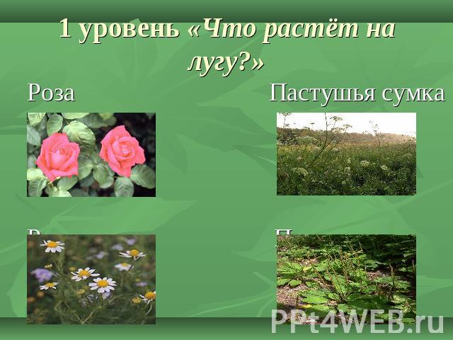 луганская область знакомство с