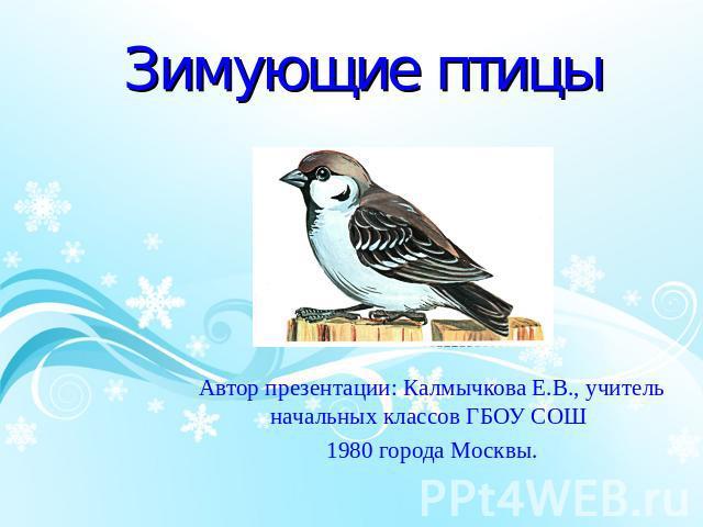 Птицы 5 букв