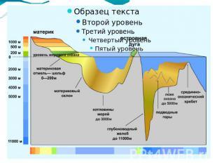 Презентация на тему жизнь в морях и океанах 5 класс