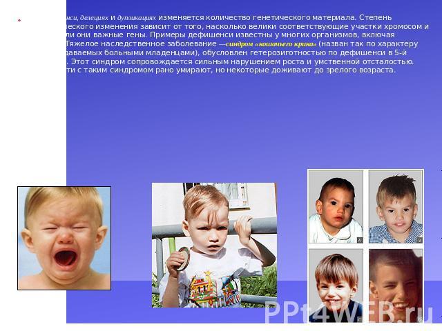 Презентация 10 Класс Биология Модификационная Изменчивость