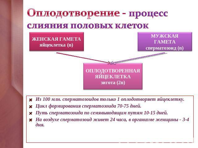 dlya-povisheniya-zhiznedeyatelnosti-spermatozoidov