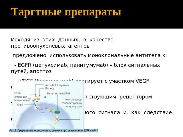 Презентацию на тему антитела
