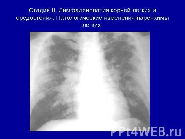 Бсп владимир официальный сайт врачи