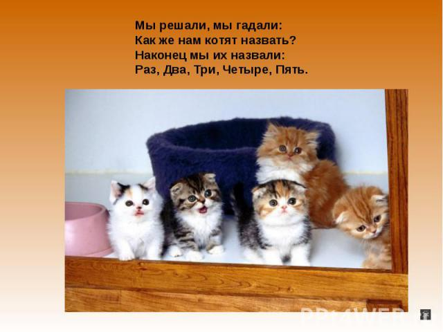 Мы решали, наша сестра гадали:Как но нам котят назвать?Наконец наш брат их назвали:Раз, Два, Три, Четыре, Пять.